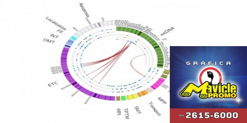 O estudo destaca a relação entre o câncer de pênis e mutações no genoma das mitocôndrias